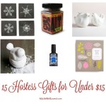 ltgt Just in time for Thanksgiving15 Holiday hostess gifts forhellip