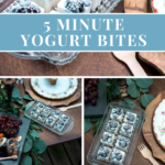 5 Minute Yogurt Bites