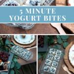 5 Minute Yogurt Bites