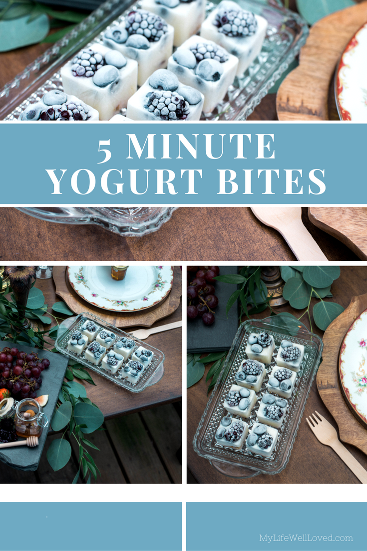 5 Minute Healthy Yogurt Bites Recipe. Awesome holiday appetizer or dessert idea from Heather Brown of My Life Well Loved