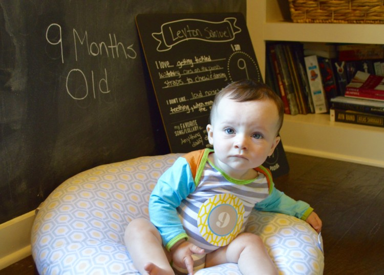 My Life Well Loved: 9 Month Old Baby Update
