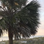 Indian Rocks Florida Family Travel Guide