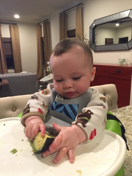 Baby Led Weaning: Avocado- 6 Months Old Milestone