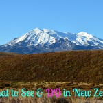 New Zealand Trip: Taupo