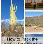 4 Packing Essentials
