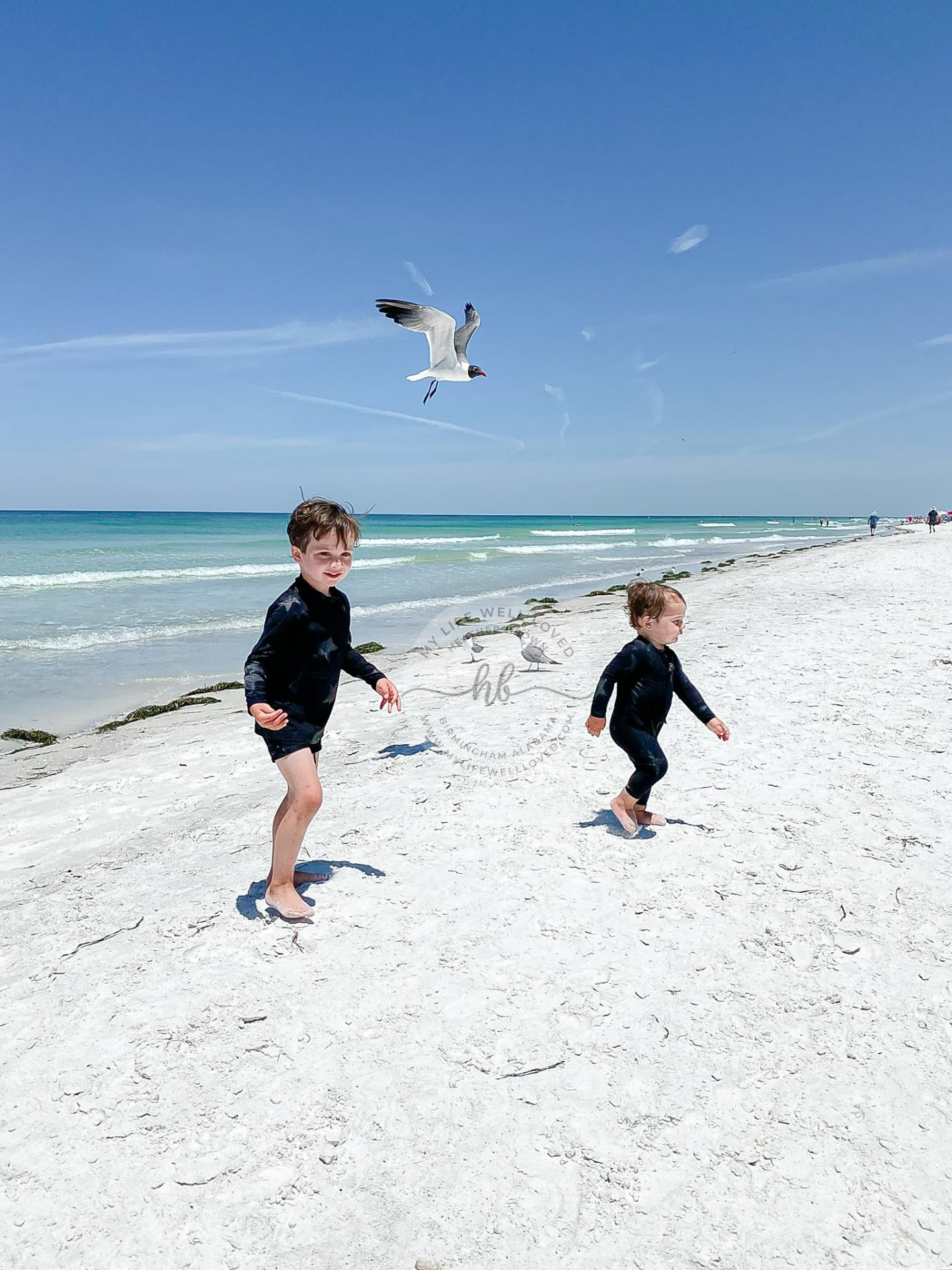 Family Travel Guide: The Best Things to Do in Indian Rocks FL with Kids featured by top US travel blogger, My Life Well Loved