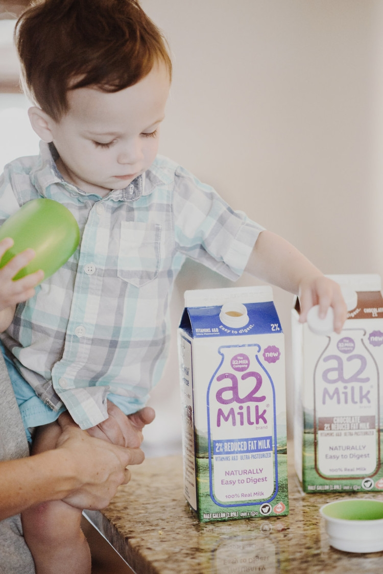 Which milk should I give my Toddler? Organic Milk vs regular milk -- A2 Milk from Heather of MyLifeWellLoved.com