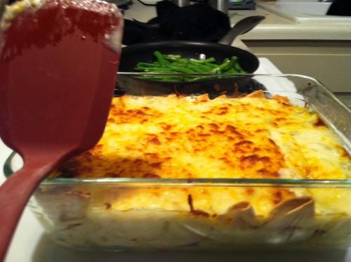 The Best White Chicken Enchilada Recipe - My Life Well Loved